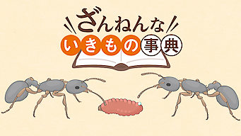 Encyclopedia of Pitiful Creatures
