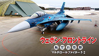 Weapon Front-Line JASDF Multirole Fighter F-2