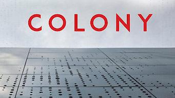 COLONY/コロニー