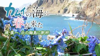 カムイの海に春が来た ~堤真一、北の離島に乾杯~