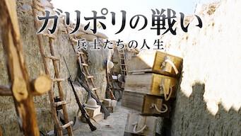 ガリポリの戦い: 兵士たちの人生