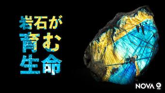 岩石が育む生命