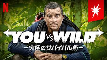 You vs. Wild -究極のサバイバル術-