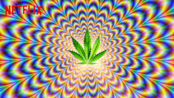グラス・イズ・グリーナー: 大麻が見たアメリカ