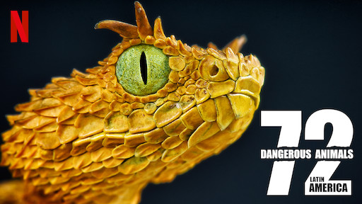 72 Dangerous Animals: Latin America