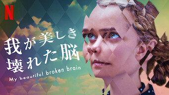 我が美しき壊れた脳