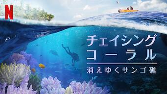 チェイシング・コーラル -消えゆくサンゴ礁-