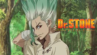 Dr. Stone: Season 1