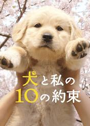 犬と私の10の約束